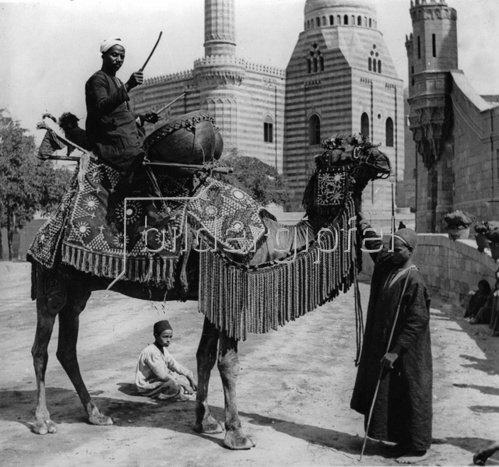Arabischer Hochzeitsmusikant auf einem reichgeschmückten Kamel reitet vor dem Brautzug. Photographie. Um 1935.