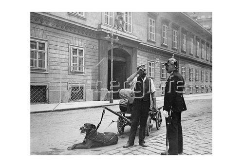 Emil Mayer: Der Hund als Zugtier, vor dem Palais Pallavicini, Josefsplatz in Wien, um 1910