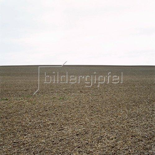 Jana Hiller: Landschaft II