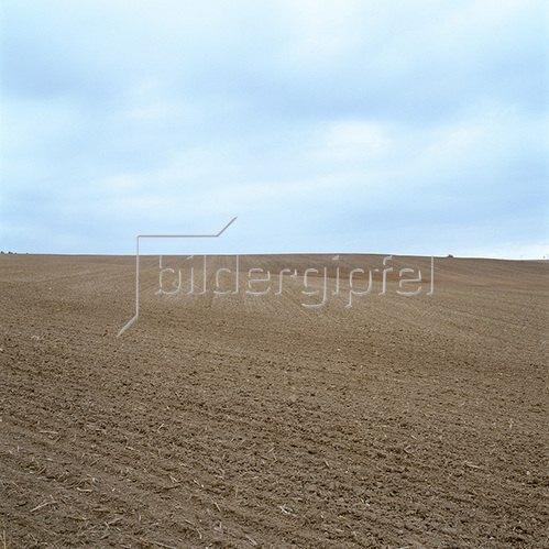 Jana Hiller: Landschaft VII