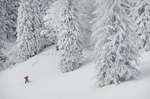Michael Reusse: Bayern, Herzogstand, Skitour