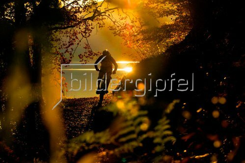 Michael Reusse: Bayern, Walchensee, Mountain Bike, Herbst
