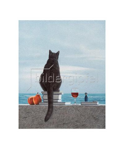 Quint Buchholz: Katze am Meer (2)