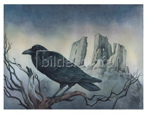 Reinhard Michl: The Raven, zu Edgar Allen Poe