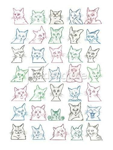 Reinhard Michl: Alle meine Katzen