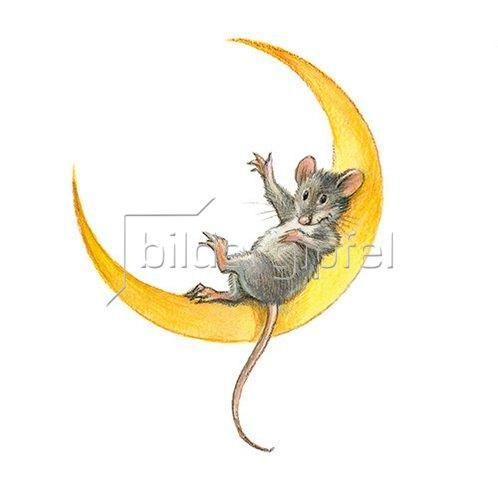 Reinhard Michl: Maus im Mond
