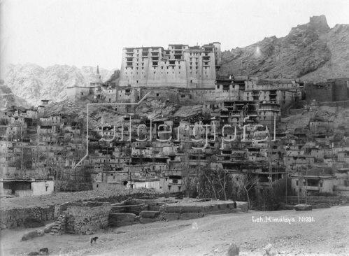 Gebrüder Haeckel: Ladakh: Ansicht der Stadt Leh, um 1910