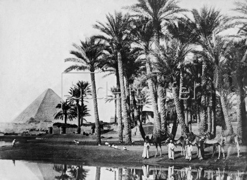 Gebrüder Haeckel: Egypt: countryside, a pyramid in the background_1910