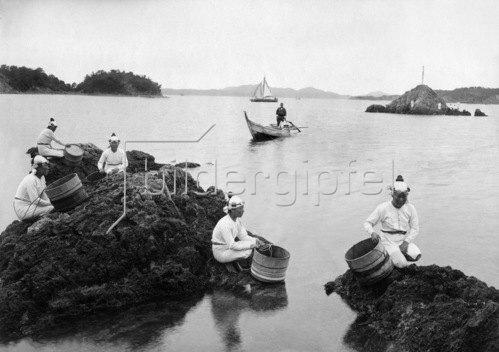 Gebrüder Haeckel: Japan: Rastende Taucherinnen, Perlentaucher.