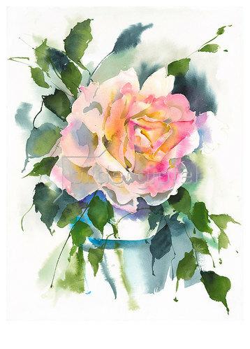 Werner Maier: Eine Rose