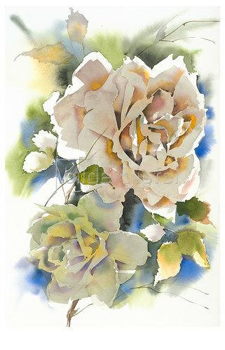 Werner Maier: Englische Rosen