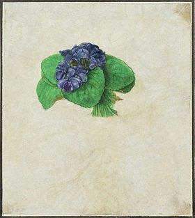 Albrecht Dürer: A bunch of violets