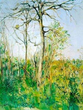 Francis Gruber: Landschaft