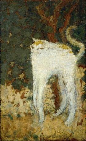 Pierre Bonnard: Die weisse Katze