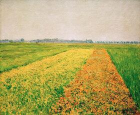 Gustave Caillebotte: La plaine de Gennevilliers, champs jaunes