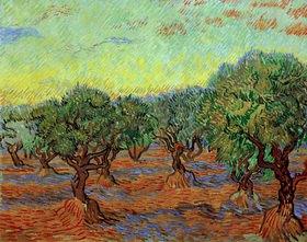 Vincent van Gogh: Olivenhain, Saint-Rémy, 1889.