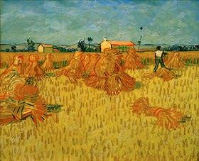 Vincent van Gogh: Harvest in Provence, Arles