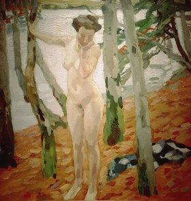 Leo Putz: Akt mit grauen Bäumen