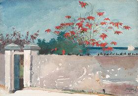Winslow Homer: A Wall, Nassau