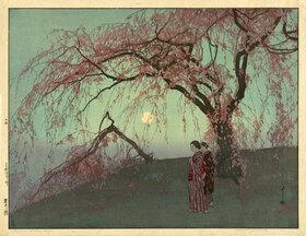 Yoshida Hiroshi: Kumoi Cherry Trees