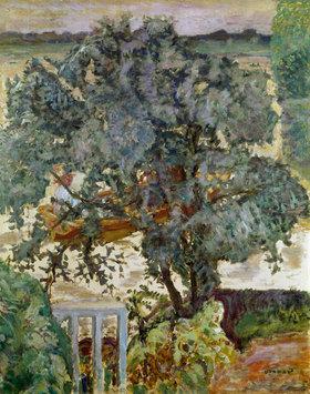 Pierre Bonnard: Der Baum am Fluß