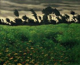 Felix Vallotton: Le champ fleuri