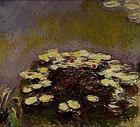 Claude Monet: Nymphéas