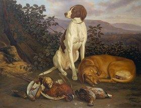 Ludwig Burckhardt: Jagdhunde mit Wild
