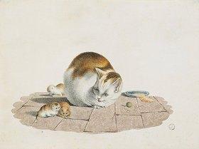 Gottfried Mind: Katzenmutter mit drei Jungen an einem Futterteller