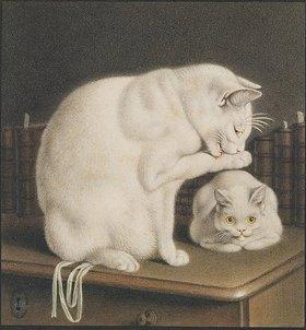 Gottfried Mind: Zwei weisse Katzen auf einem Tisch mit Büchern