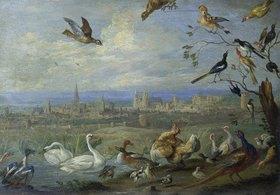 """Jan van Kessel: Aus dem Zyklus """"Die vier Erdteile"""": Randbild 7 (Brüssel) aus der Tafel """"Europa"""""""