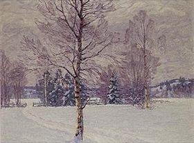 Carl Johansson: Wintertag in Schweden