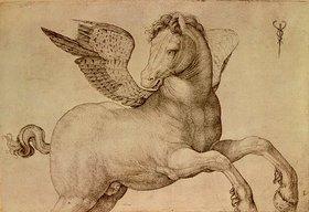 Jacopo de Barbari: Pegasus