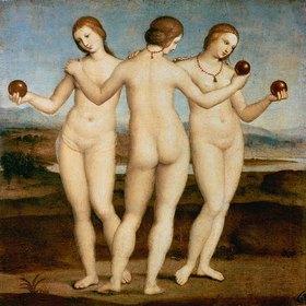 Raffael (Raffaello Sanzio): Die drei Grazien. Gegen