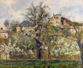 Camille Pissarro: Gemüsegarten mit blühenden Obstbäumen