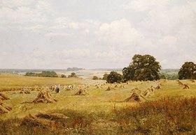Edward Wilkins Waite: Kornernte