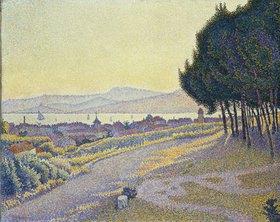 Paul Signac: Pinienwäldchen über Saint-Tropez