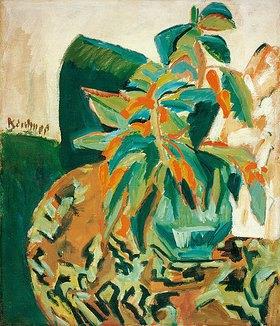 Ernst Ludwig Kirchner: Blühende Pflanze