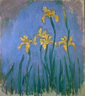 Claude Monet: Gelbe Iris