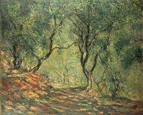 Claude Monet: Olivenhain im Garten Moreno