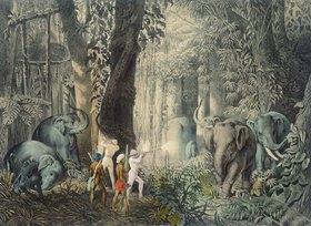 István Nagy: Bei der Elefantenjagd