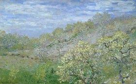 Claude Monet: Bäume in Blüte