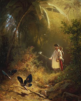 Carl Spitzweg: Der Schmetterlingsfänger