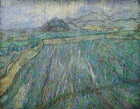 Vincent van Gogh: Weizenfeld im Regen