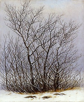 Caspar David Friedrich: Gebüsch im Schnee