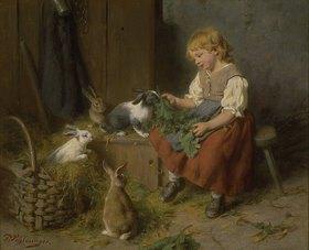 Felix Schlesinger: Kaninchen füttern