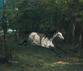 Gustave Courbet: Durchgehendes Pferd (Le piqueur ou le cheval dérobé)