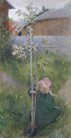 Carl Larsson: Apfelblüte (Appelblom)