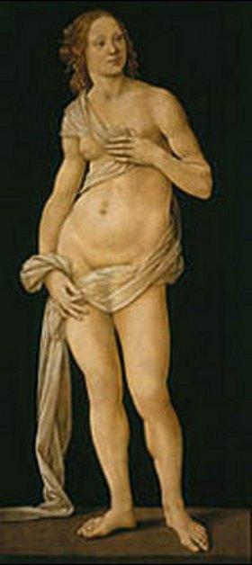 Lorenzo di Credi: Venus