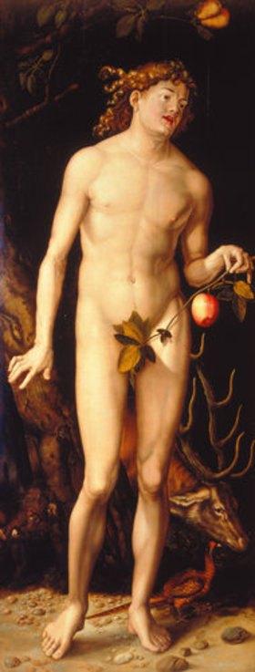 Hans Baldung (Grien): Adam